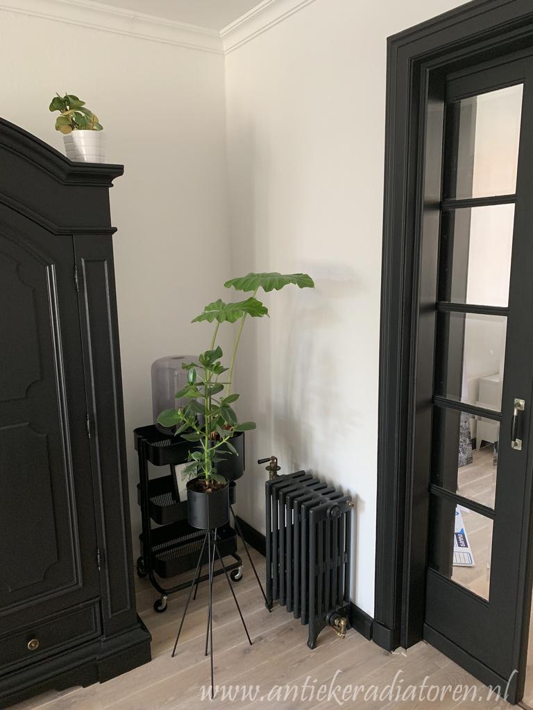 geplaatste gietijzeren radiator 105