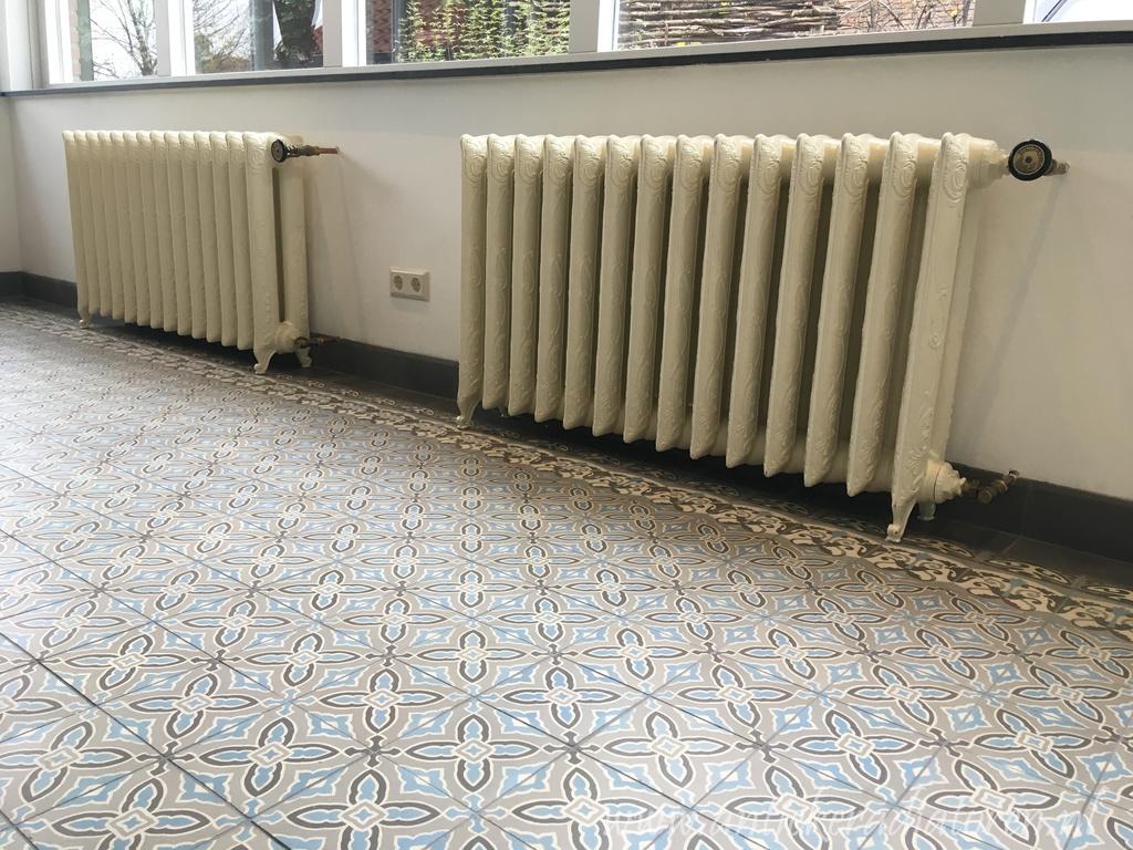 geplaatste gietijzeren radiator 113
