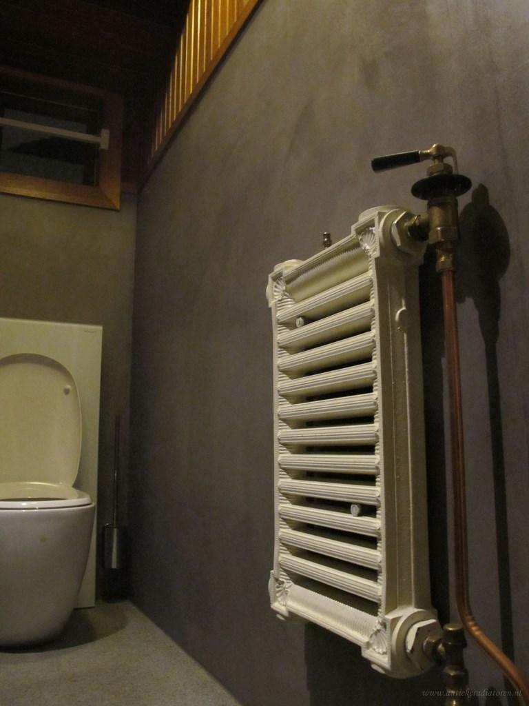 geplaatste gietijzeren radiator 80