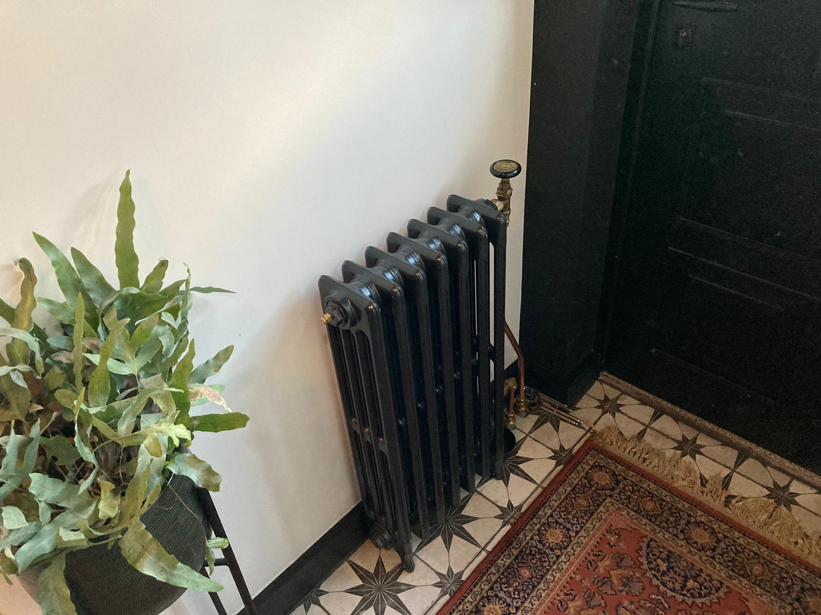 geplaatste gietijzeren radiator 124