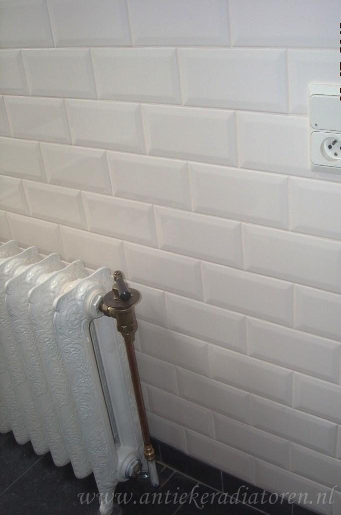 geplaatste gietijzeren radiator 109 c